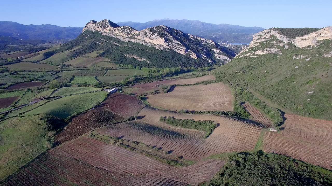 vidéo et photo par drone pour agriculture
